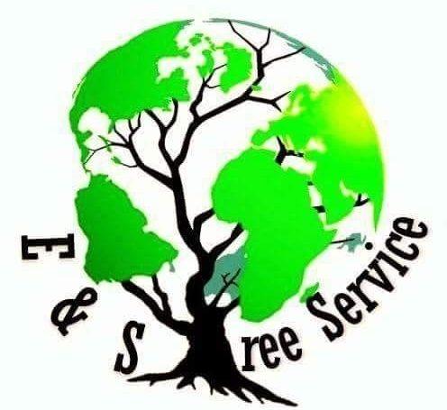 E&S TREE SERVICE